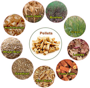 flat die pellet mill can make various biomass materials into wood pellets