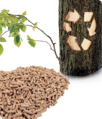 The Forward-looking of Biomass Pellets