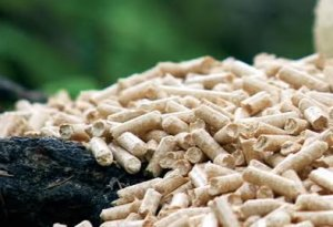 French Wood Pellet Market