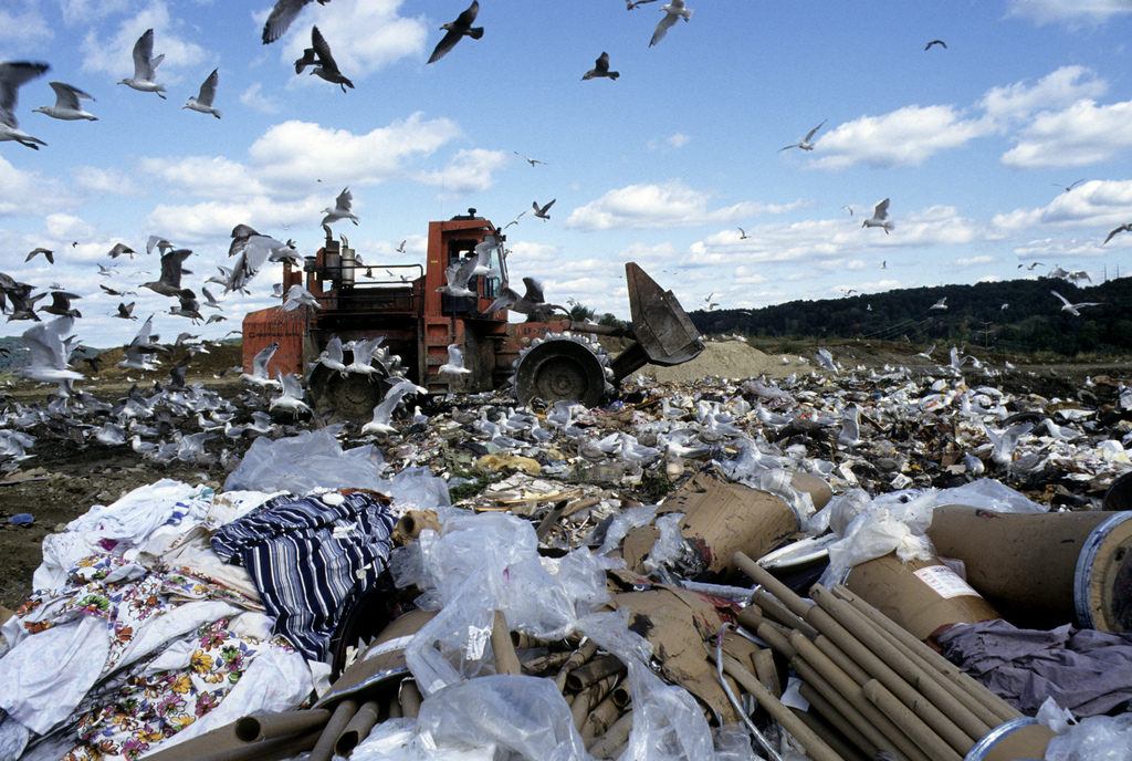 landfill1of_municipal_solid_waste