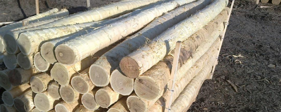 peeled wood logs