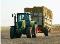 Source and Widespread Use of Biomass Pellets