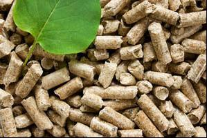 Wood Pellet Heating Solution for Home & Industrial Production